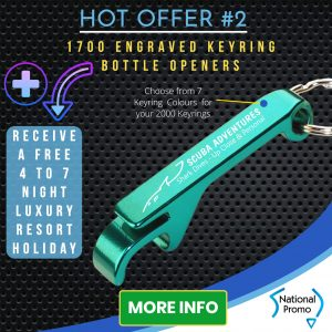 Engraved Pens, National Promo Hot Offer #2, Spend $1200 in 2020 and get a FREE Holiday